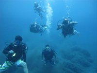 Travel diving