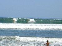 Surf en la playa de Sayulita