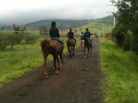 Horseback riding 3 hours close to Morelia