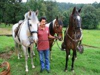 Guia con caballos
