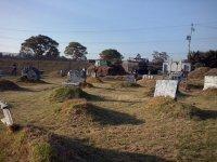 Paquete de 200 cápsulas de gotcha en Lerma