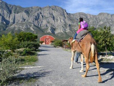 Tours in Monterrey