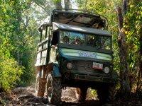 Oferta Excursi�n por la Jungla Maya y snorkel en Cenotes