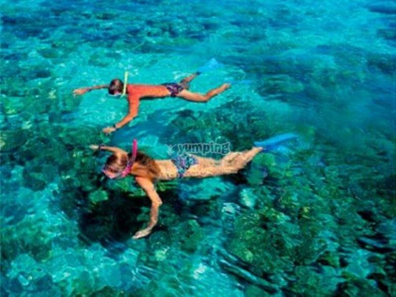 practica snorkel en cozumel
