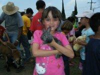 Farm rabbits
