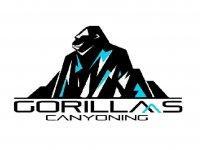 Gorillas Canyoning