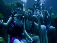 amigos bajo el agua