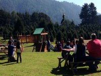 Zip-line, meal and christmas tree for 2