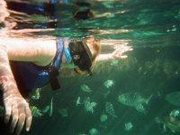 Catamarán con buffet y barra libre a Isla Mujeres