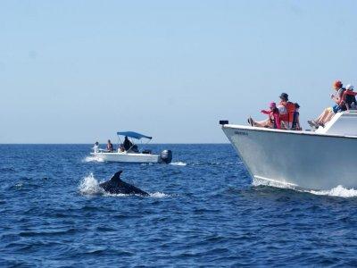 Onca Wildlife Adventures Paseos en Barco
