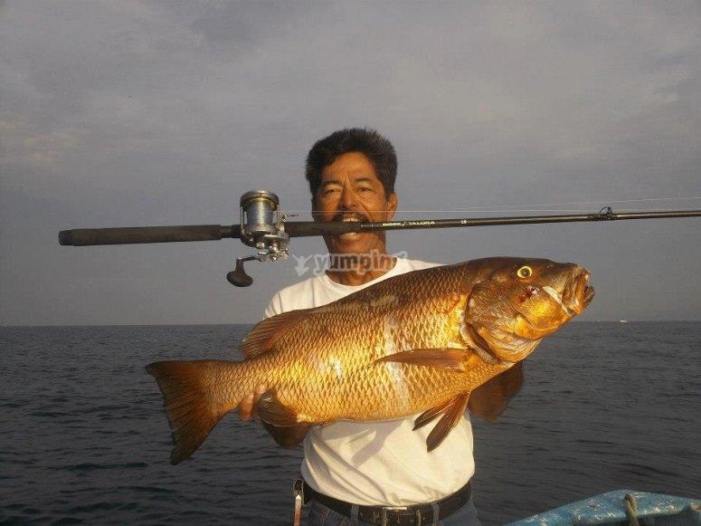 Pesca en puerto vallarta