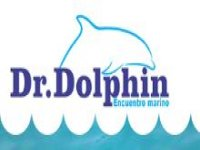 Dr. Dolphin