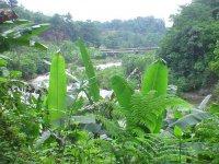 Landscapes of Veracruz