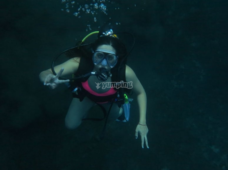 Live with us the experience of diving