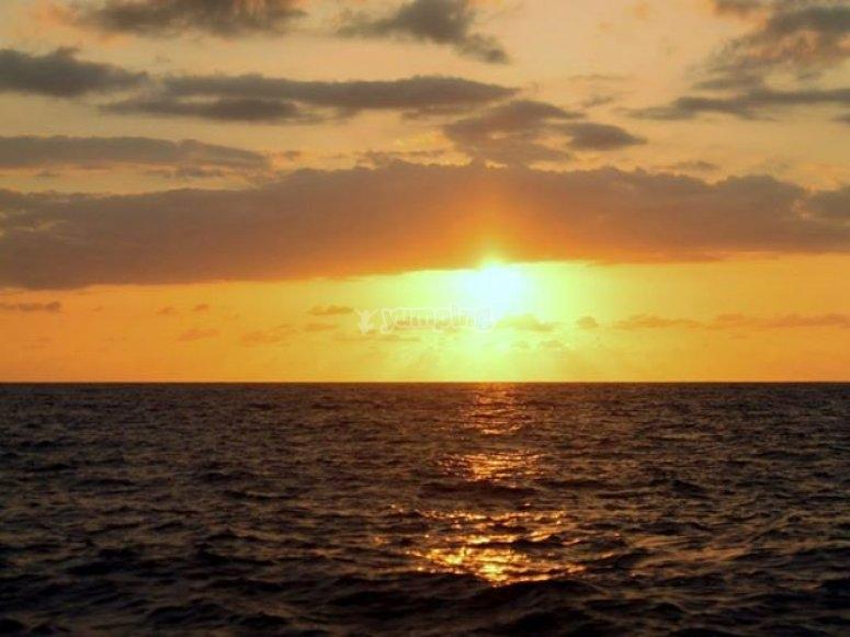 Vallarta sunsets