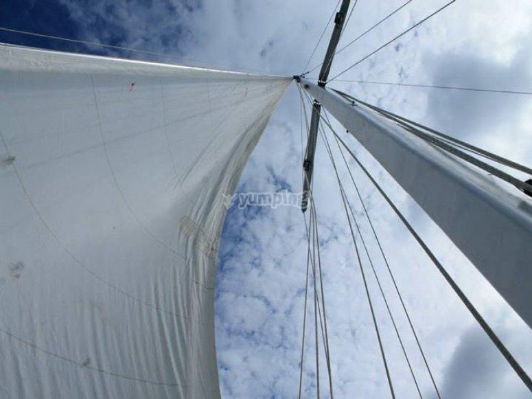 velas al viento