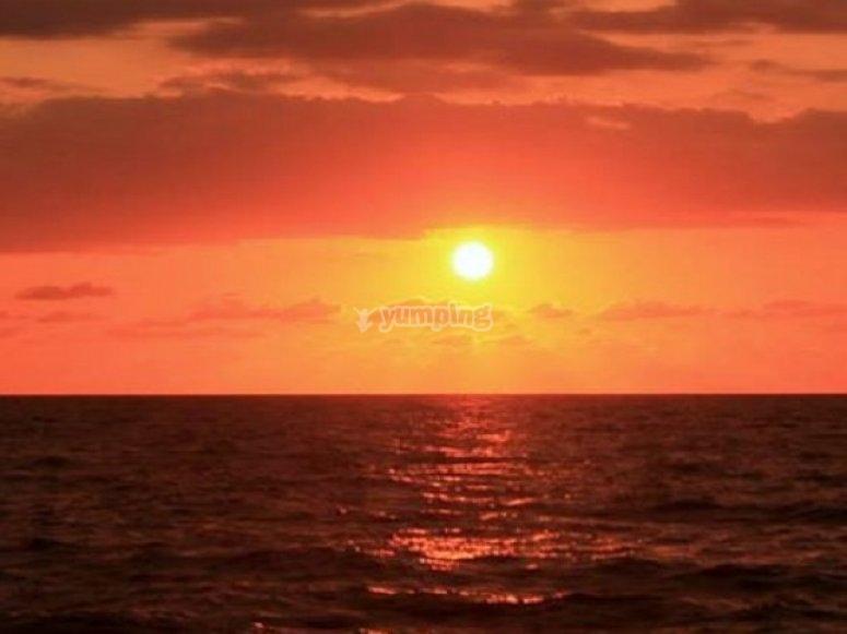 el sol de vallarta
