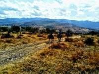 Ruta a Caballo 2hrs. por San Miguel de Allende
