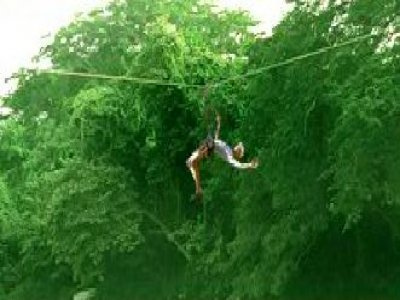 Veraventuras Canopy