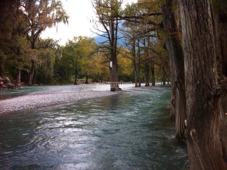 River pics