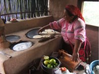 Gastronomia huichol