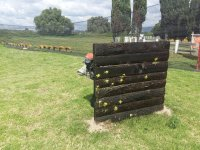Gotcha in Texcoco with 100 paint capsules