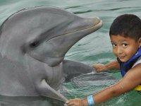 Dolphin Encounter program for children in Isla