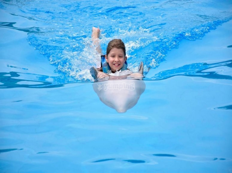Happy girl with dolphins