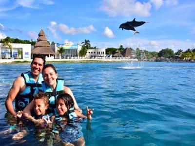 Royal Swin for Children in Cozumel Dolphinarium