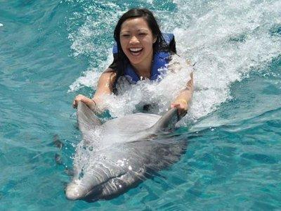 Dolphins program Swim Adventure in Cozumel