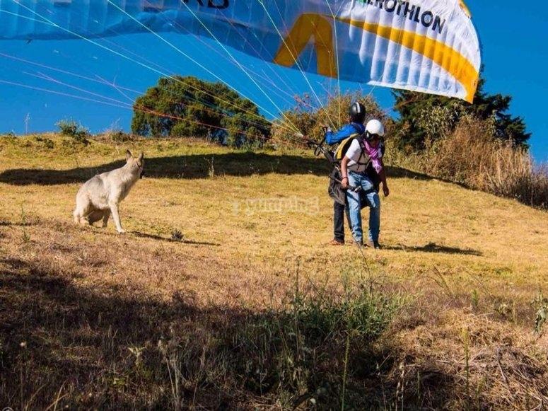 Paraglilding