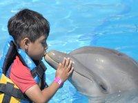 Nado Royal Swim con delfines para peques en PV