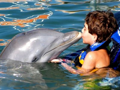 Swim with Dolphins program for kids