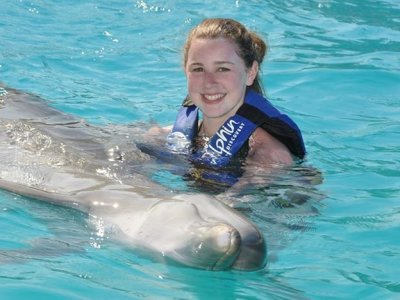 Encounter with Dolphins program in Aquaventuras