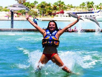Nado con delfines y kayaks Royal Swim en Los Cabos
