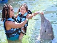 Nado con 2 delfines y kayaks en Los Cabos Niños