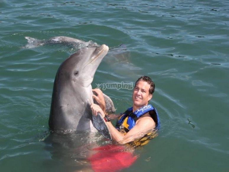 abrazo de delfin