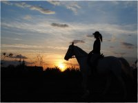 Horseback riding at sunset