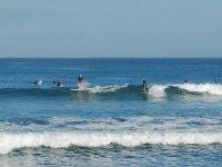 Surfistas en la bahia