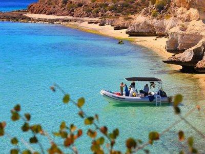 Boat trip and Snorkel, 4 hours. Isla Danzante.