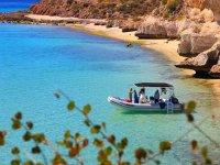 Tour barco 4 horas a la Isla Danzante con snorkel