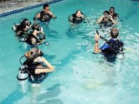 Diving lessons in pool, 2 hours. Islas Loreto.