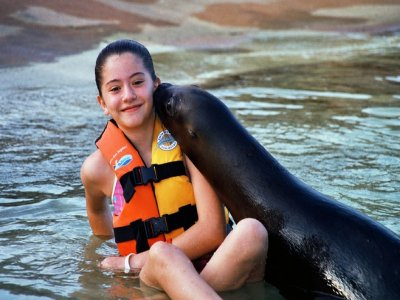 Swim with dolphins, sea lions and manatees, kids