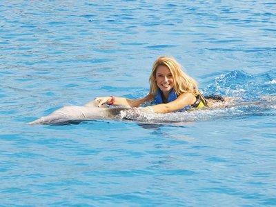 Swim with dolphins + Parque Garrafón ticket