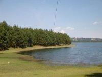 Zip line in Rio Grande