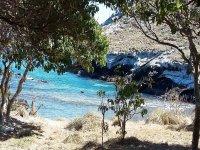 Isabel Island snorkeling