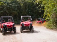 Buggies en Playa del Carmen