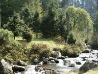 Biodiversity in Los Dinamos