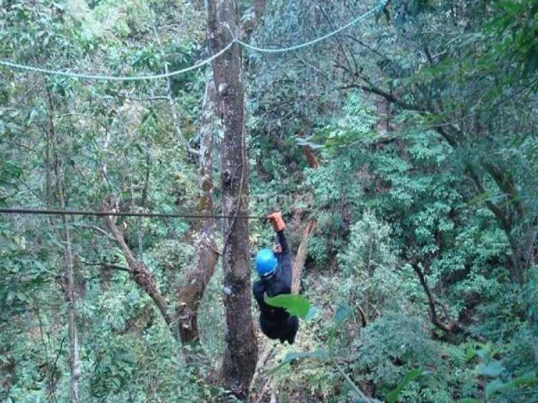 One of the zip-lines
