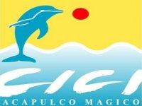 Cici Acapulco Mágico Nado con Delfines